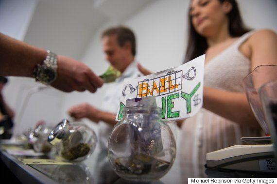 Please Stop Arresting Marijuana Activists, For Canada's