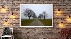 Photography And Framing Options For Your Home