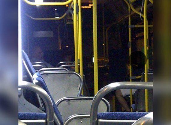 Dan Stoddard, Ottawa Bus Driver, Stops Bus To Help Woman Fleeing