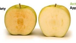 B.C. Company's Freaky Non-Browning Apples Soon To Be Sold In
