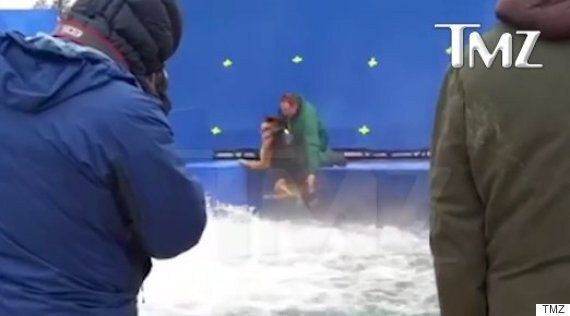 Animal Cruelty Alleged On 'A Dog's Purpose' Set After Video