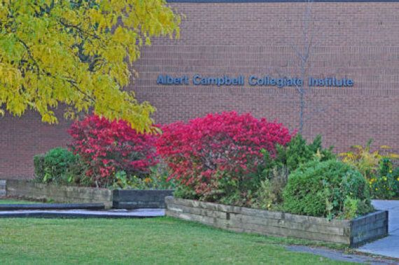 Bruce McCallum, Toronto Math Teacher, Stabbed To Death In Costa