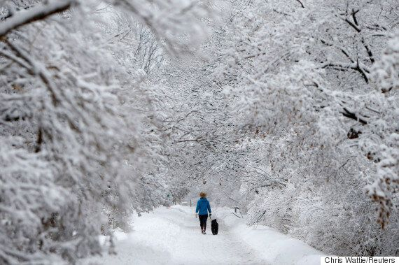 Climate Change Will Make Canadian Winters