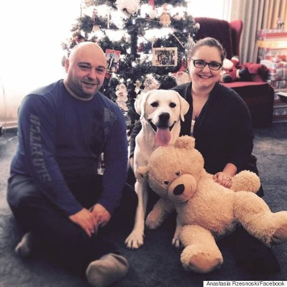 Winnipeg Couple Received $2,500 Bill After Their Dog Was Hit And Killed By A