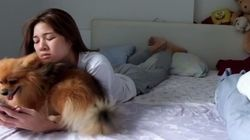 Dog Just Wants Cuddles From