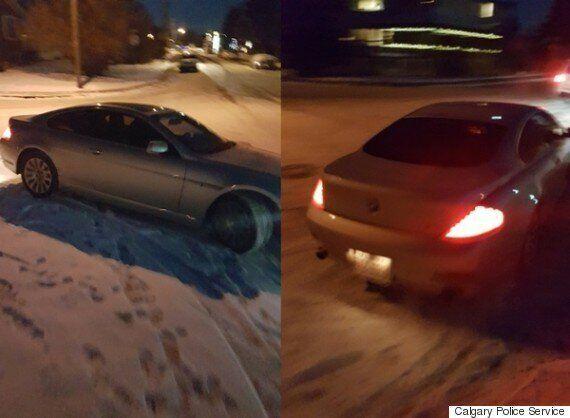 Woman Beaten With Hockey Stick In Calgary Road Rage
