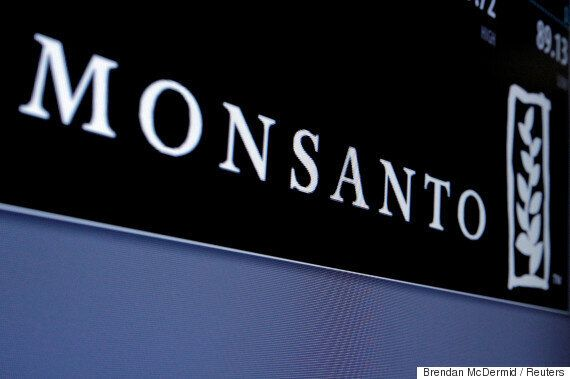 I Listened To The Stories Of Those Impacted By Monsanto's