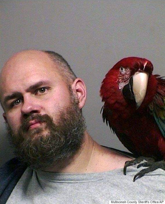 Parrot Named 'Bird' Photobombs Mug Shot After Owner's