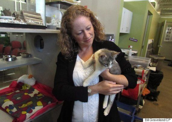 Calgary Oil Downturn Forces People To Give Up Their
