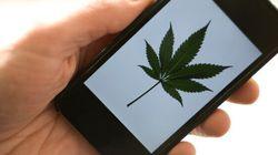 Finally, A Medical Cannabis App