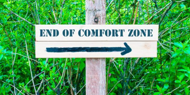 END OF COMFORT ZONE written on Directional wooden sign with arrow pointing to the right against green...
