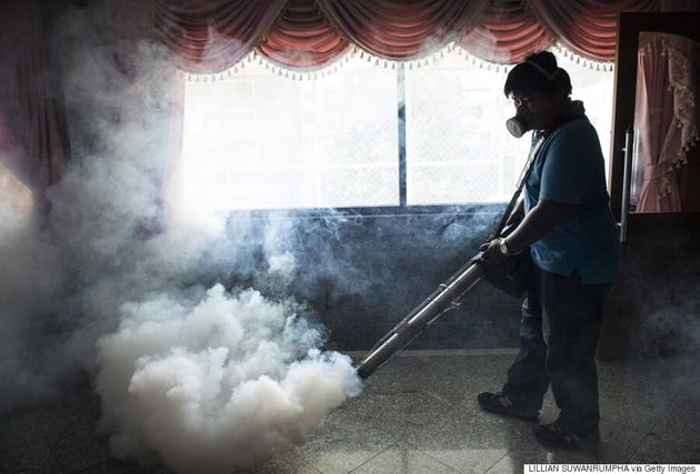 Zika Virus No Longer A World Public Health Emergency, Says World Health