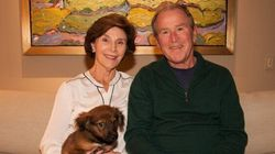 George W. Bush Adopted A Rescue Puppy On U.S. Election