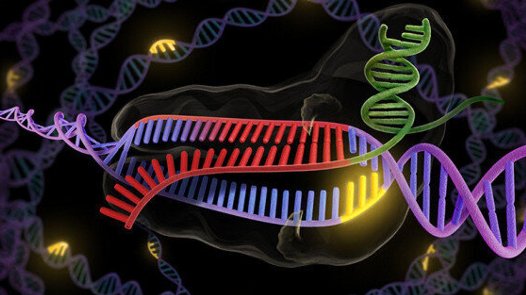 Секвенирование генома картинка