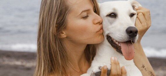 The Science Is In: Dogs Are More Lovable Than