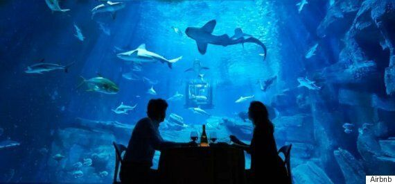 Shark Tank Airbnb Gives People A Fright Night At The