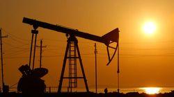 Sorry, Alberta. Oil Could Drop To $40 Per Barrel