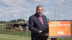 Mulcair Invokes WWII To Slam Harper's Approach To Climate