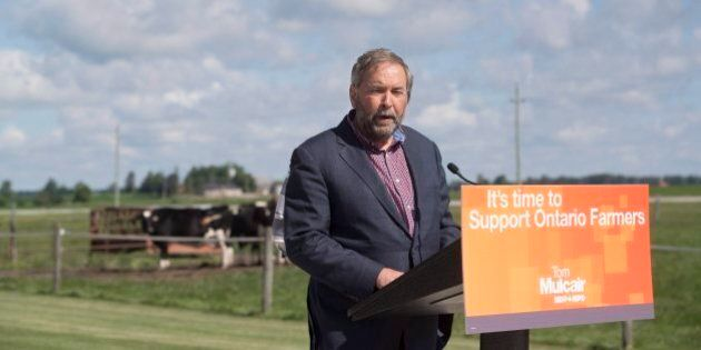 Mulcair Invokes Second World War While Criticizing Harper's Approach To Climate