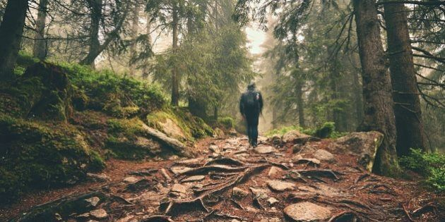 Traveler hiking through deep forest in the