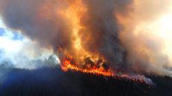 Jasper Wildfire Now Under Control:
