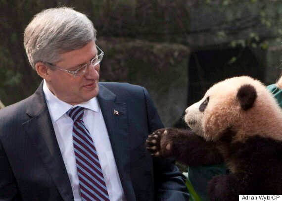 Mark Henry Rowswell, Beloved Canadian Celebrity In China, Has High Hopes For Trudeau's