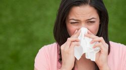Send Seasonal Allergies Back Into Hibernation -