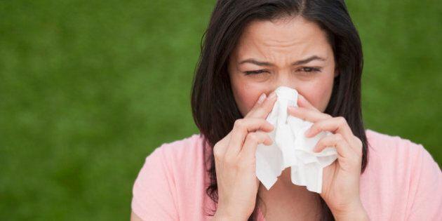 Send Seasonal Allergies Back Into Hibernation -