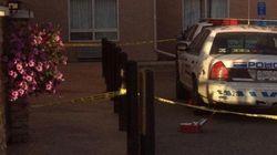 Masked Man Dies In RCMP Shooting At Site C Open