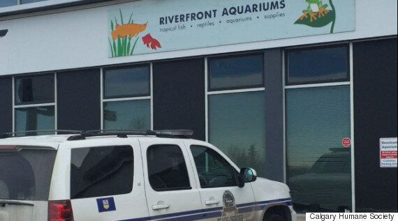 Riverfront Aquariums Faces 4th Set Of Charges For Neglecting