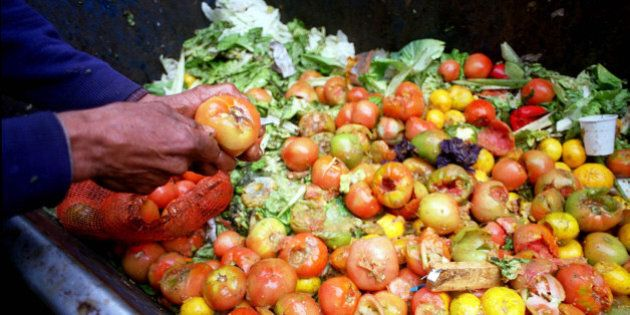 A man cuts the good part of a rotten tomato in the dump of Buenos Aires biggest vegetable market Tuesday,...