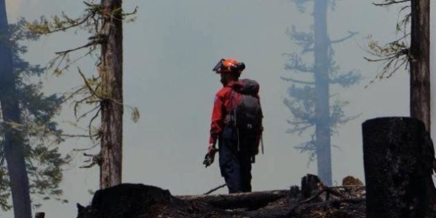 B.C. Fires: Tree Fallers Denied Opportunity To Help Fight