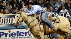 Stampede Cowboy Disqualified For Mistreatment Of
