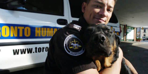 HUMANE - 08/11/07 - TORONTO - Toronto Humane Society investigations officer Tre Smith and Cryus, a Rottweiler...