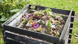 Tips For Starting A Backyard Compost