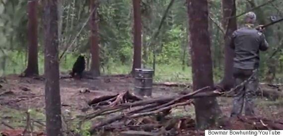 Josh Bowmar's Bear Kill Prompts Alberta To Ban Spear