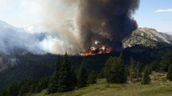 B.C. Wildfires Cost Province $80 Million -- And