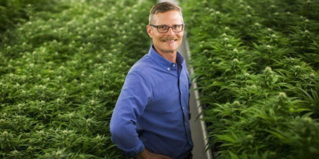 From 'Reefer Madness' To Lifestyle Brand: Canada's Entrepreneurs Rebrand