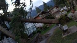 Woman Killed As Windstorm Pummels B.C.