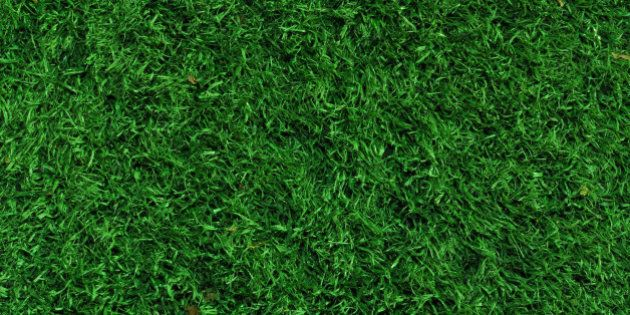 Fake Grass used on sports