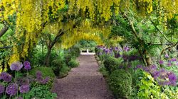 Discover The 7 Most Beautiful Botanical Gardens Across The