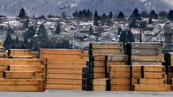 Unity Is Needed For A Renewed Softwood Lumber
