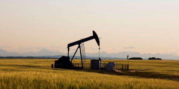 An oil pump jack pumps oil in a field near Calgary, Alberta, July 21, 2014. Pump jacks are used to pump...