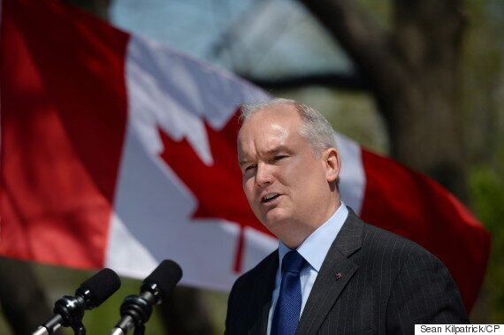 Erin O'Toole, Former Veterans Affairs Minister, Mulling Tory Leadership