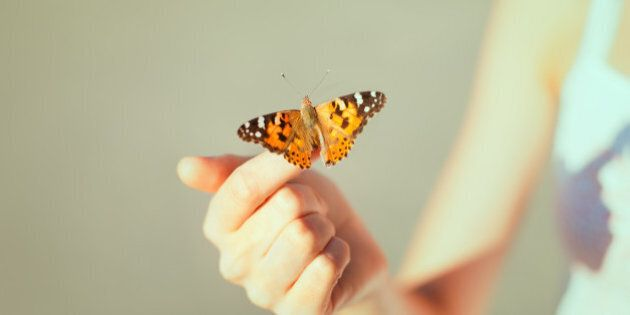 Beautiful butterfly sitting on the girl
