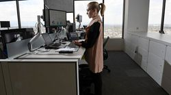 Canada's Civil Servants Friggin' Love Standing Desks: