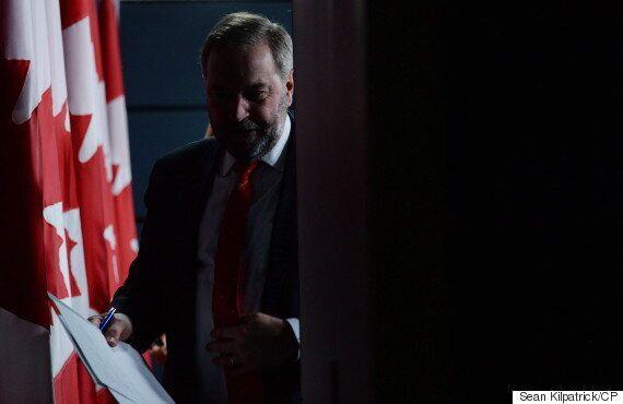 Mulcair 'Not A Good Salesperson' For NDP, Riding President