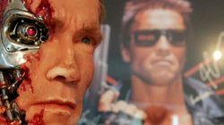 Schwarzenegger Cutout Causes Gun Scare In