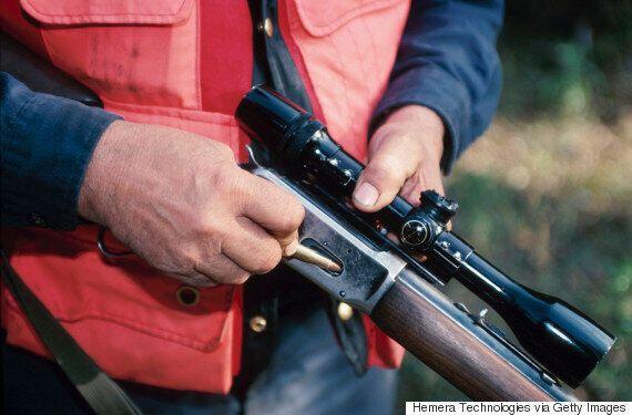 Quebec Long-Gun Registry Facing Caucus Rifts, New Push From Gun