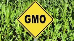 Pro-GMO Crusaders' Efforts To Silence Critics Won't Solve
